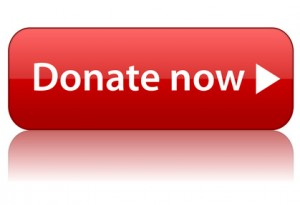 war_Donate_button